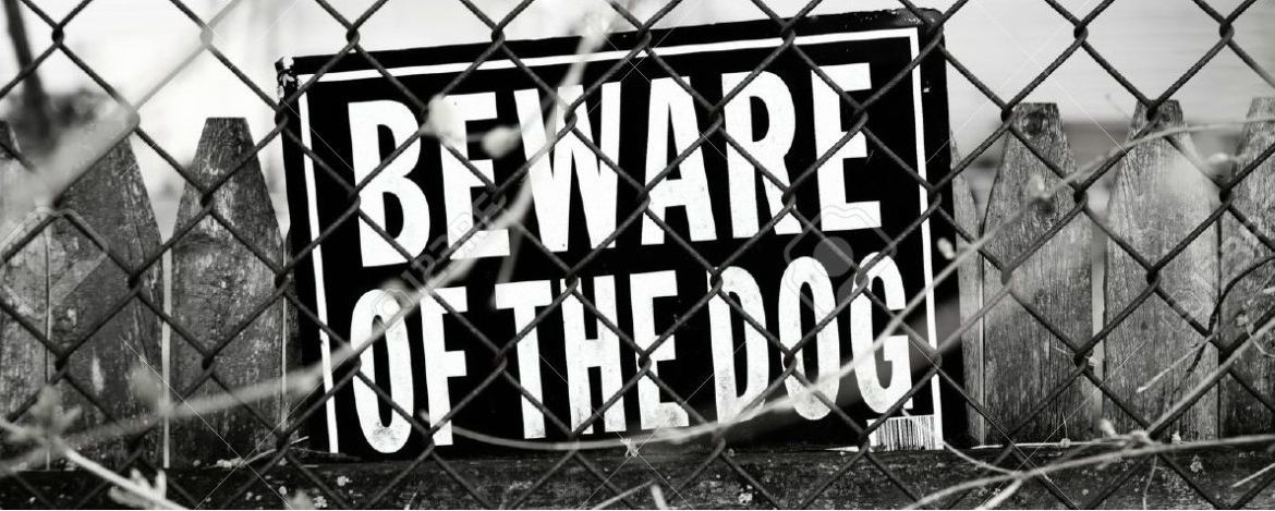 386915-beware-of-dog-sign-stock-photo