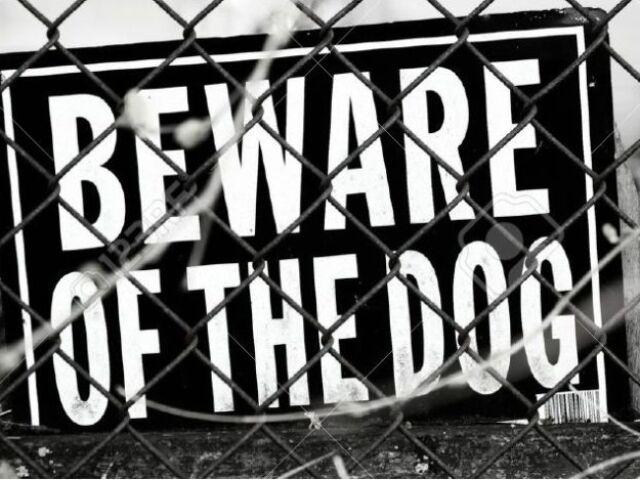 386915-beware-of-dog-sign-stock-photo