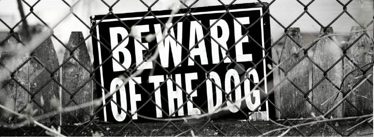 15 Cute dogs behind Beware sign board