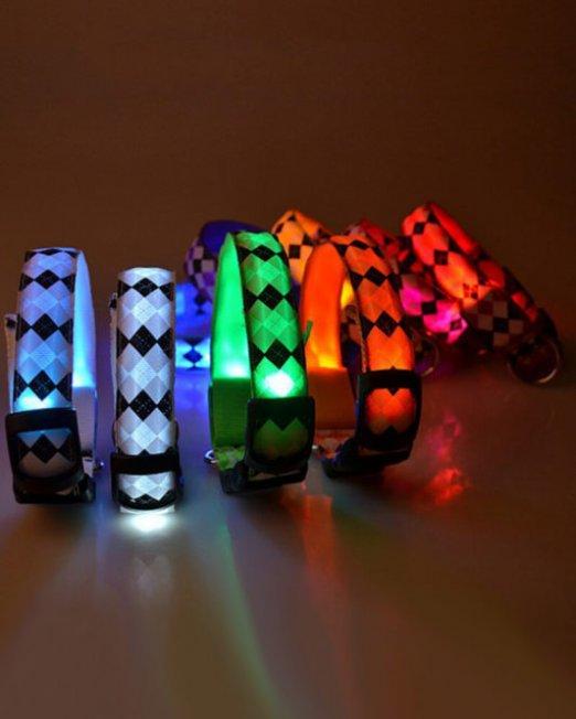 checker-print-led-collars
