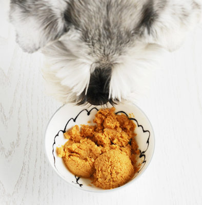 Easy to make ice creams for your pooch.