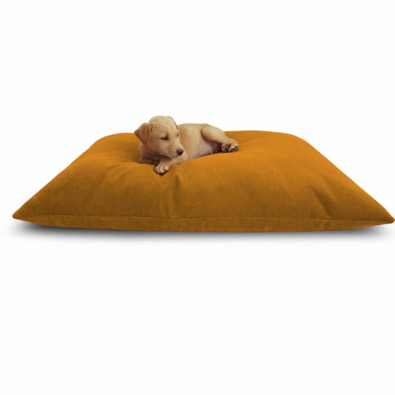 Waterproof Dog Bed Yellow Color | 40% Discount | Buy Now! @Prazuchi
