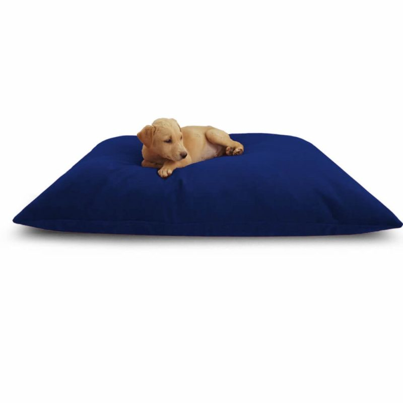 Waterproof Dog Bed Navy Blue Color | 40% Discount | Buy Now! @Prazuchi