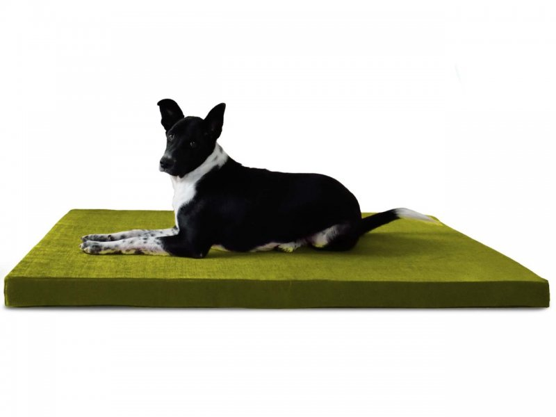 orthopedic dog bed olive green 1