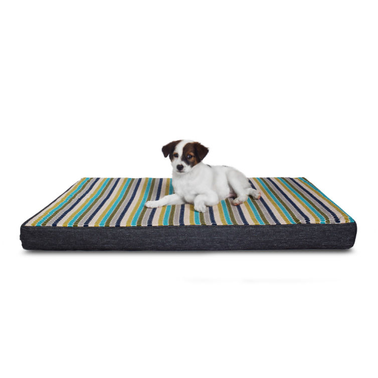 Blue Candies Orthopedic Dog Bed