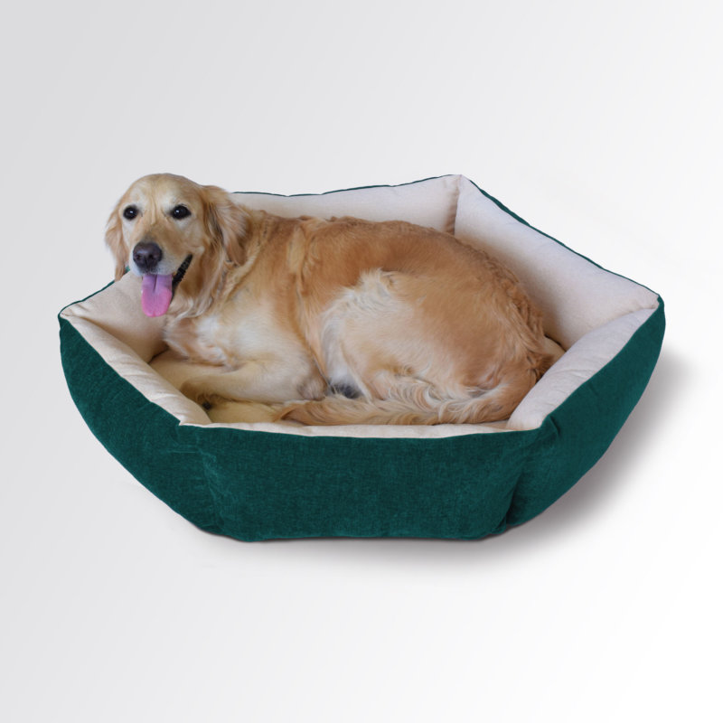 bolster dog bed prazuchi