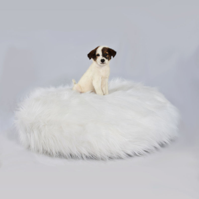 Fur Dog Bed White